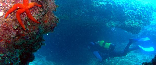 Turismo Moraira - Rutas de buceo en aguas de Moraira.