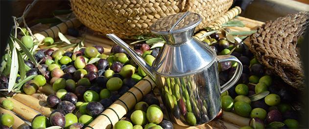 Mercat bio Xaló - Artisan olive oil.